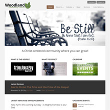 Woodland Church Design Template - Brown